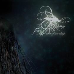 Fredy Rotten - Even If We Sleep